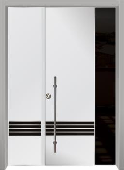 דלת מדגם: 8024