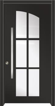 דלת מדגם: 9029